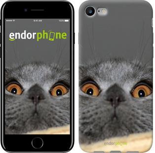 """Чехол на iPhone 7 Смешной кот """"2856c-336"""""""