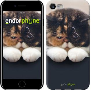 """Чехол на iPhone 7 Задумчивый кот """"936c-336"""""""