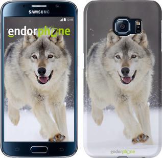 "Чехол на Samsung Galaxy S6 G920 Бегущий волк ""826c-80"""
