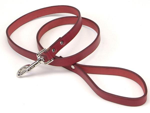 Coastal Circle-T кожаный поводок для собак, коричнево-красный, 2смХ1,2м