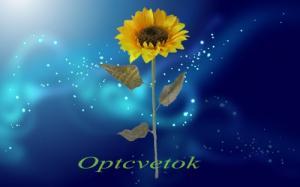 Фото  ПОДСОЛНУХ 80 СМ