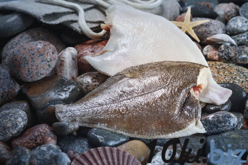 Камбала потрошеная мороженая - Рыба и морепродукты в Санкт-Петербурге