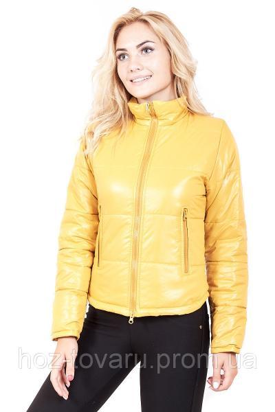 Куртка демисезонная женская Весна (5 цветов) оптом от производителя