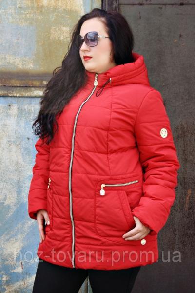 Куртка женская демисезонная большого размера Глория (2 цвета), женская верхняя одежда больших размеров