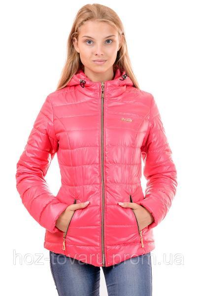 Куртка женская большого размера демисезонная куртка Кулиса 2016 (4 цвета), дропшиппинг украина