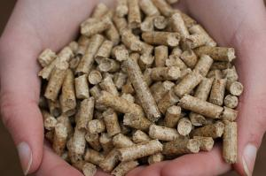 Фото  Топливные пеллеты(гранулы)-дуб, граб, хвоя