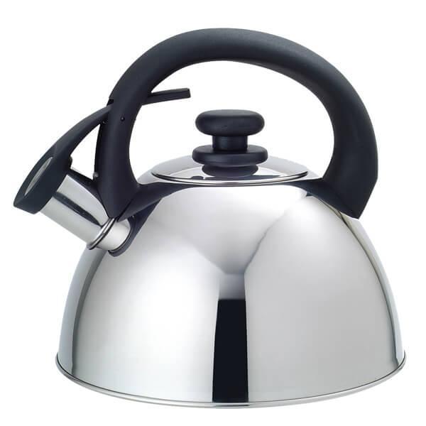 Фото Чайники, Чайники из нержавеющей стали Чайник 2,5л Maestro 1302 RAINBOW