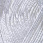 Begonia 003 White