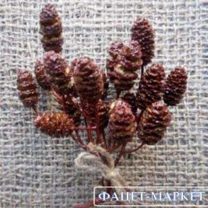 Фото Натуральные материалы - Эко, Шишки для декора Шишка ольховая цвета вишни