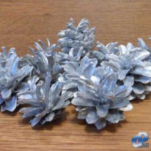 Фото Натуральные материалы - Эко, Шишки для декора Шишка сосновая Серебро