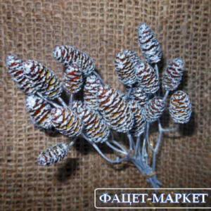 Фото Натуральные материалы - Эко, Шишки для декора Шишка ольховая цвета серебра
