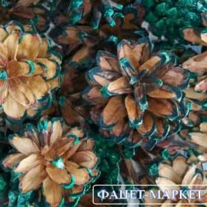 Фото Натуральные материалы - Эко, Шишки для декора Шишка сосновая зеленая