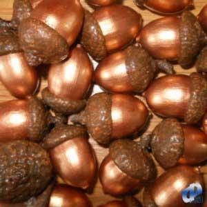 Фото Натуральные материалы - Эко, Желуди для декора Жёлуди декоративные цвета бронзы
