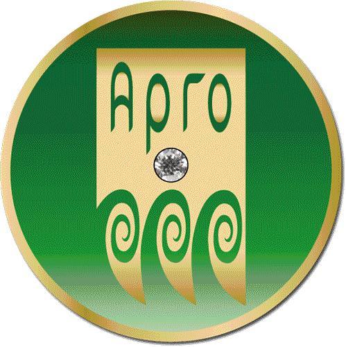 Значок Руководителя Арго
