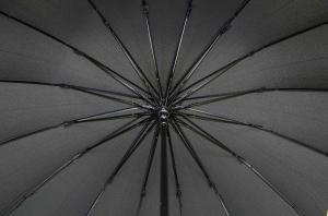 Фото Женские Женский зонт Три Слона ( полуавтомат ) арт. 1100-03