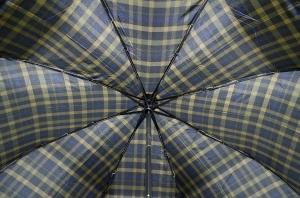Фото Мужские Мужской зонт Три Слона ( полный автомат ) арт. 730-09