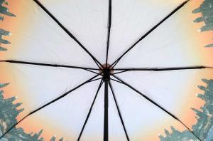 Фото Женские Женский зонт Max ( полный автомат ) арт. 458-01