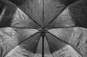 Фото Женские Женский зонт Sponsa ( полуавтомат ) арт. 8242-02