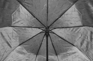 Фото Женские Женский зонт Sponsa ( полуавтомат ) арт. 8242-05