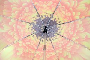 Фото Женские Женский зонт Три Слона ( полный автомат ) арт. 115D-02