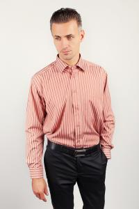 Фото  Рубашка в полоску с длинным рукавом Fra №869-11 (Кирпичный)