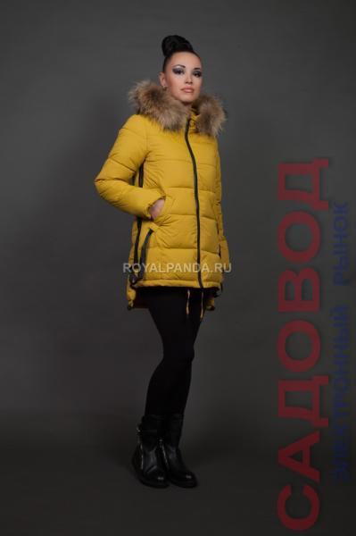 Куртка женская зимняя 1616 Куртки женские на рынке Садовод