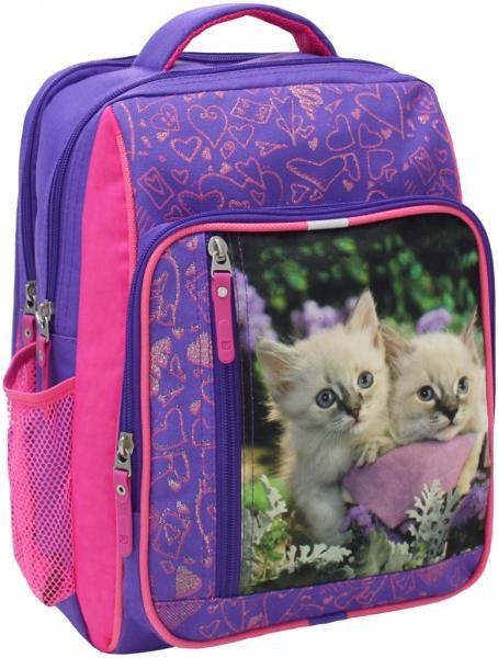 Рюкзак школьный Школьник 24х33х11