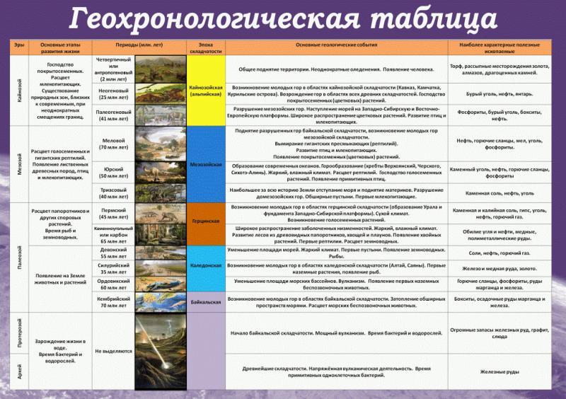 Фото 4.. СТЕНДЫ ДЛЯ ШКОЛ, Химия и биология Стенд