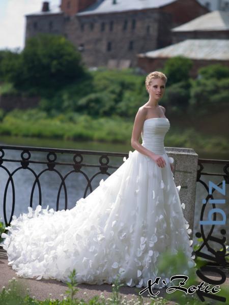 Хризантема Свадебные платья купить на рынке Дубровка