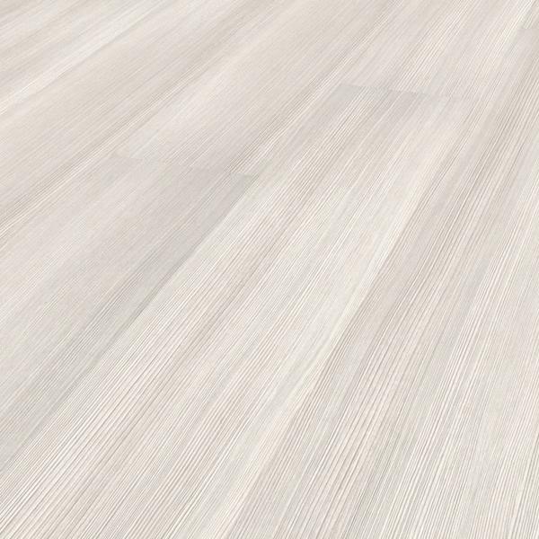 8464 Сосна белая