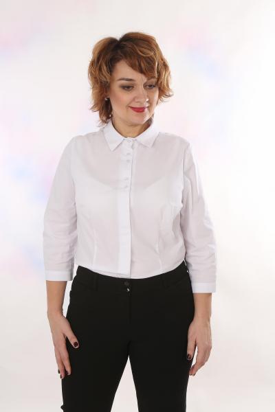 Блузы 6-37