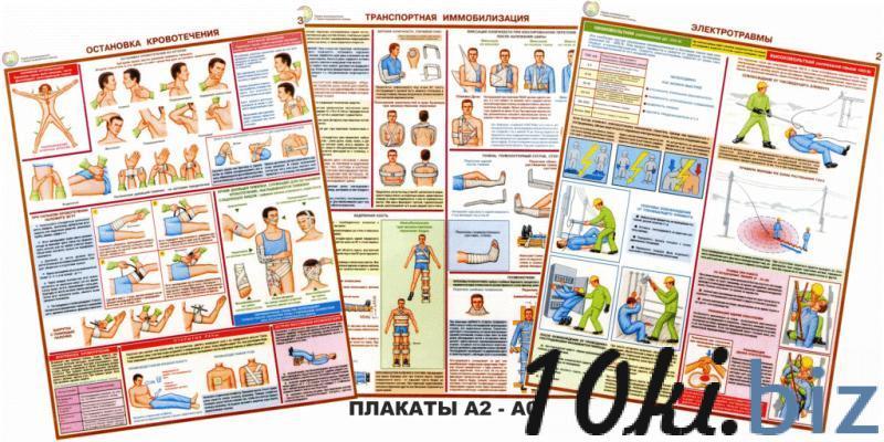 """Плакаты """"Оказание первичной медицинской помощи"""" (6 плакатов) купить в Беларуси - Информационные стенды"""