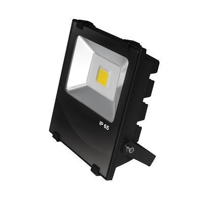 Светильник светодиодный (прожектор) черный с радиатором COB 100W Eurolamp