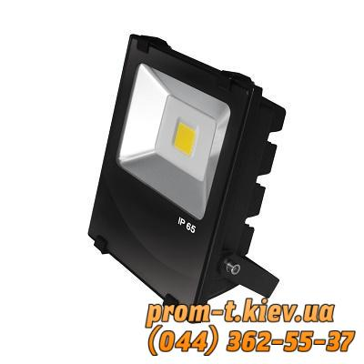 Фото Светильники, прожекторы, светодиодные, уличные, потолочные, подвесные, промышленные, точечные, Светильник Eurolamp Светильник светодиодный (прожектор) черный с радиатором COB 100W Eurolamp