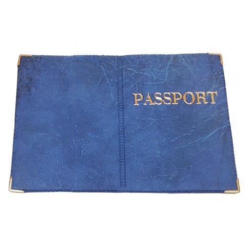 Обложка на Заграничный паспорт Артикул 99 №06