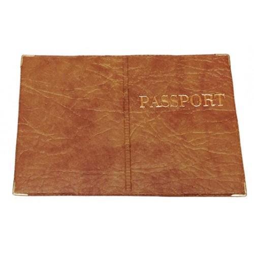 Обложка на Заграничный паспорт Артикул 99 №05