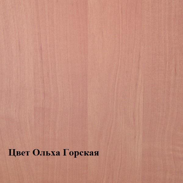 Фото Прихожие, обувницы Прихожая 1000 (Ромис)