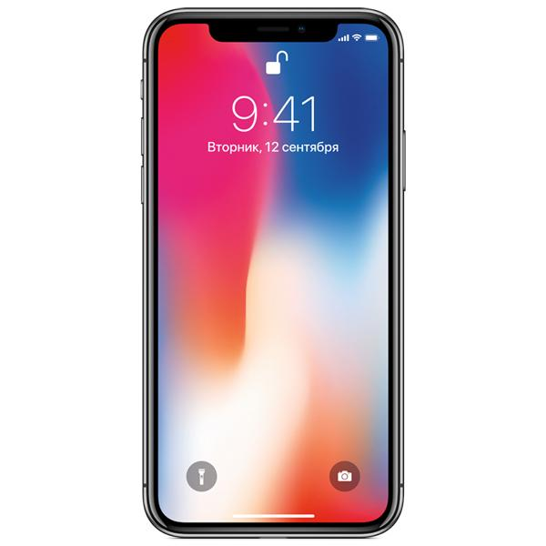 Смартфон Apple iPhone X 256GB Space Gray