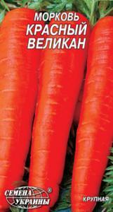 Фото Морковь Красный великан