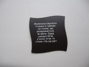 Фото Магниты Растишка Дино-Ленд ОДУД