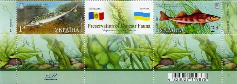 Фото Почтовые марки Украины, Почтовые марки Украины 2007 год 2007 № 852-853 сцепка почтовых марок Фауна Украина-Молдавия рыбы