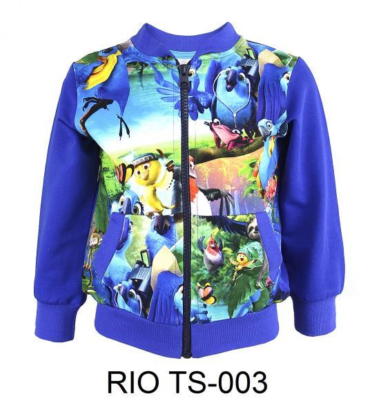 RIO TS-003