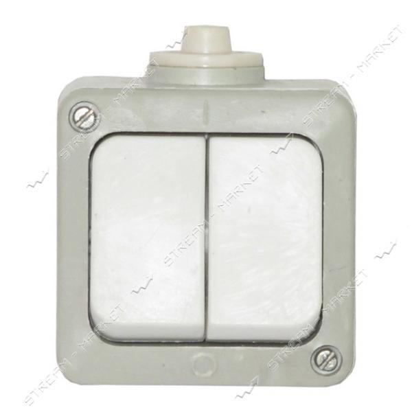 Выключатель двухклавишный А56-004УХЛ2 полугерметичный