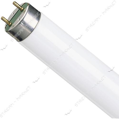 Philips Лампа ЛЛ 26 мм (люминисцентная стандартная) 58Вт TL-D 58/54 G13 холодная(КРАТНОСТЬ 25ШТ)