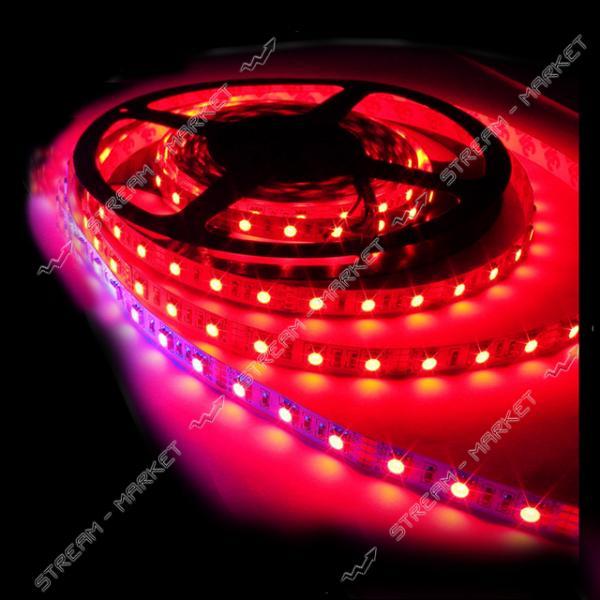 Светодиодная лента smd 3528, 120 Led/m, DC 12, 9.6 W/m, IP65 красный