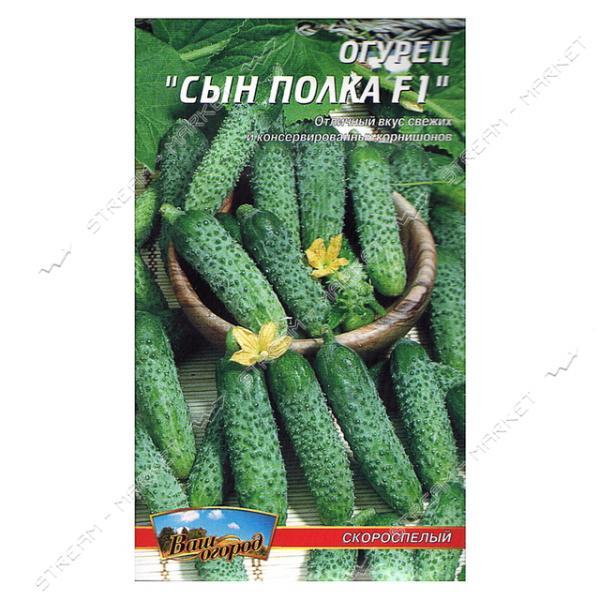 Семена огурец евро пакет Сын полка F1 20 семян