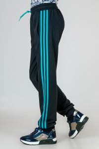 Фото Детские спортивные костюмы, штаны спортивные Детские спортивные штаны Classic, на мальчика р-р 36, 38, 40,42