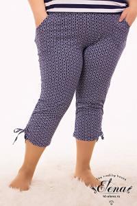 Фото Женская одежда, Капри Капри