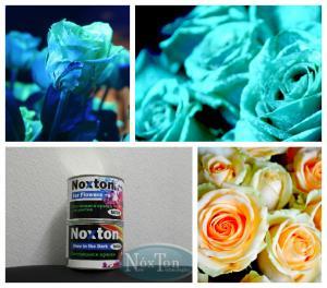 Фото Светящаяся краска Нокстон Светящаяся в темноте краска для живых цветов