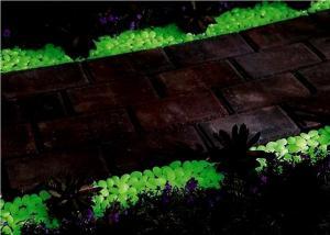 Фото Готовая светящаяся продукция Нокстон Светящиеся камни (светящаяся галька)